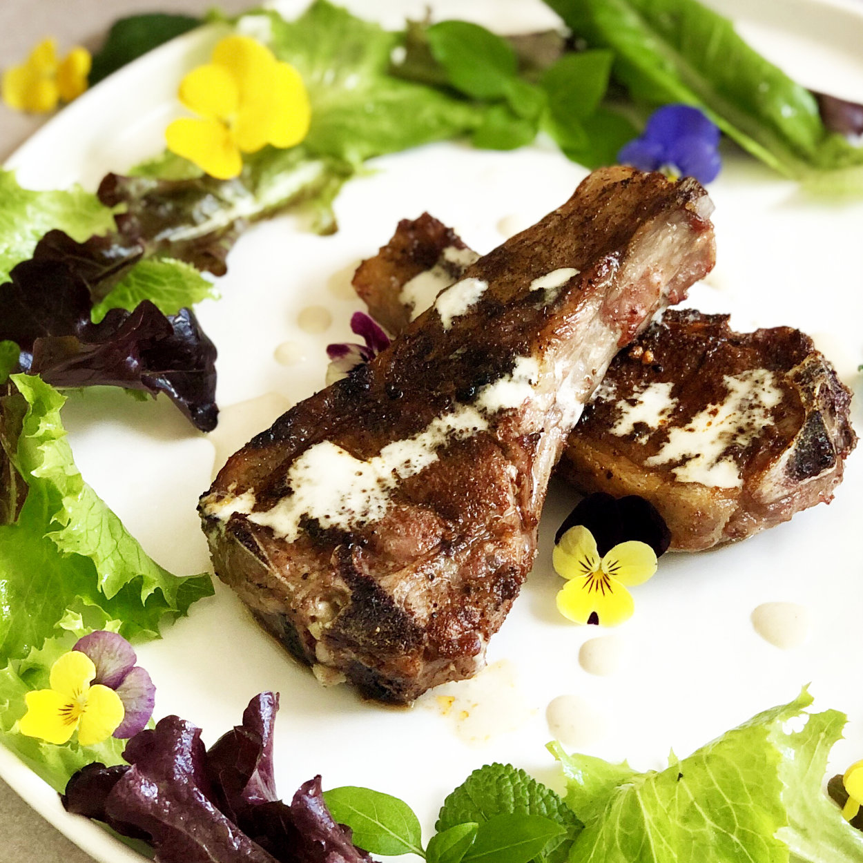North African Grilled Lamb Chops with Tahini Sauce